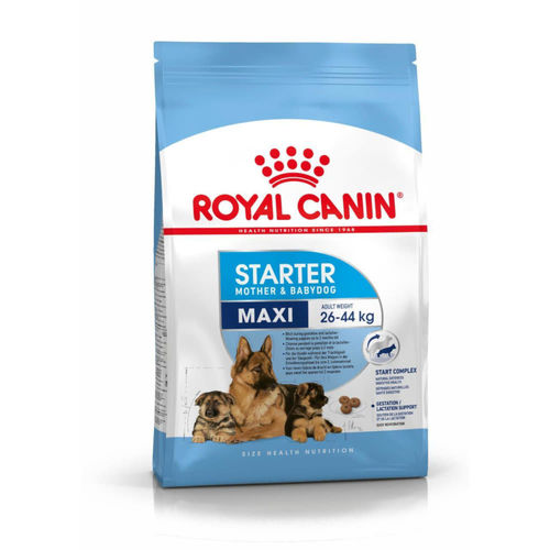 Royal Canin Maxi Starter Mother & Baby Dog Food