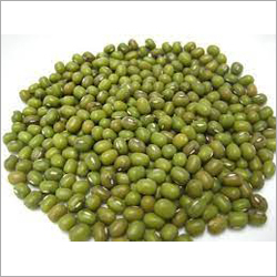 Green Gram Seeds