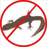Lizrd Pest Control Services