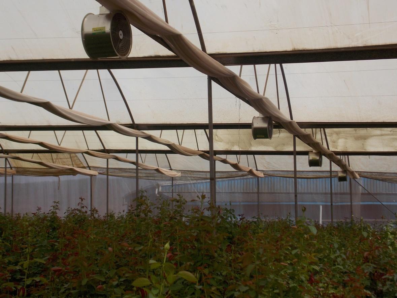 Greenhouse Air Circulation Fan