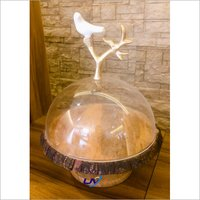 Bird Plate Dome