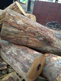 Indian Sal Wood