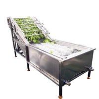 Leeks Garlic Leaf Bubble Washing Machine with High Spray