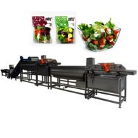 Ydvt-1000c Broccoli Bell Pepper Loofah Vortex Washing Machine Apple Guava Lotus Mist Washer