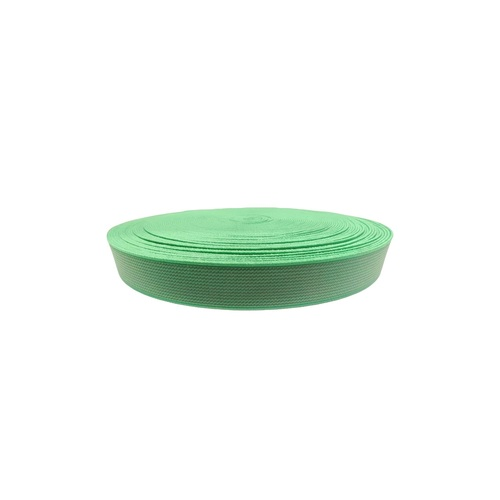 25 mm Shoe Elastic SS-4146 P. GREEN PANTONE17-6153 TPG FEM GREEN