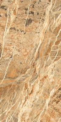 Fossil Gold 800X1600MM GLOSSY PORCELAIN TILES