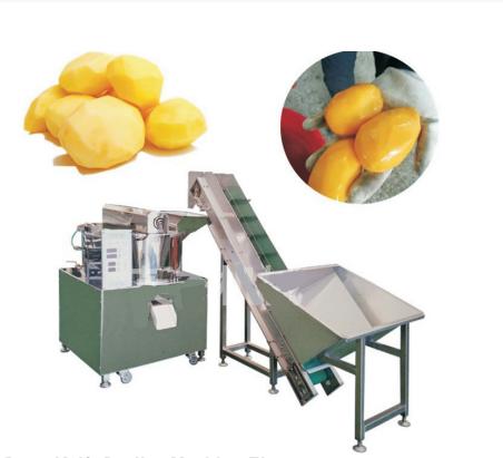 LQJP-750 Drum Knife Potato Peeling Machine+Elevator