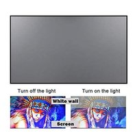 XElectron 120 inch Reflective Fabric Projection Screen, 105 W x 60 H