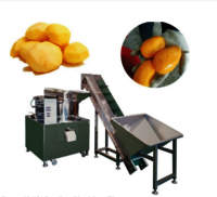LQJP-750 High Quality Low Price Drum Knife Ginger Cassava Peeling Machine With Elevator