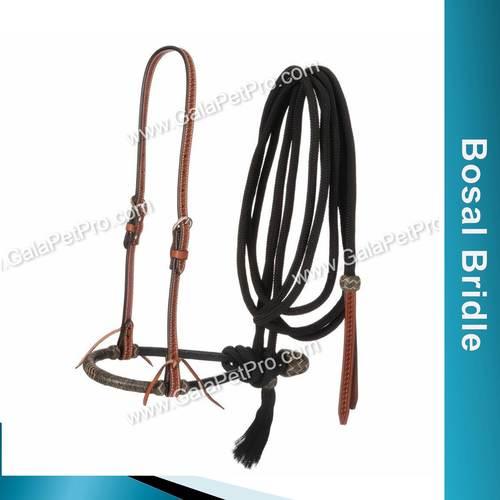 Bosal Bridle