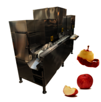 YDT-50 Wholesale Automatic Stainless Steel Fruit Peeler Peach Apple Core Remover Peeling Machine