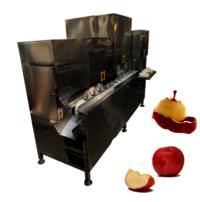 Ydt-50 Factory Price High Quality Persimmon Apple Skin Peeling Machine Coring Splitting Machine