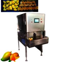 YGT-1200 Wholesale Full Automatic Mango Skin Peeling Machine Kiwi Fruit Peeling Machine