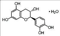 Catechin Hydrate powder