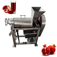 Ht-1.5 Factory Price Coconut Tomatoes Vegetable Juice Maker Making Machine Fruit Pineapple Juicer Machine