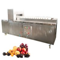 YL-6 Wholesale New Type Olive Plum Date Apple Pear Peach Seed Core Remover Separator Machine