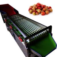 Sl-500s Kiwi Berry Breadfruit Sorting Machine Fruit Star Apples Sorter Sizer Selecting Machine Tomato Date Grader Size Grading Machine
