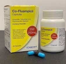 Co-fluampicil Capsules