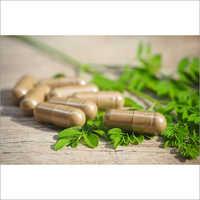 Herbal Moringa Capsule