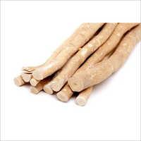 Miswak Extract (Salvadora Persica)