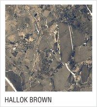 Hallok Brown