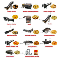 Full Automatic Potato Chip French Fries Production Line
