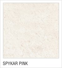 Spykar Pink