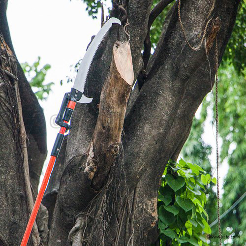 Long Reach Tree Saw I 14 Feet I Telescopic Fiber Glass Rod