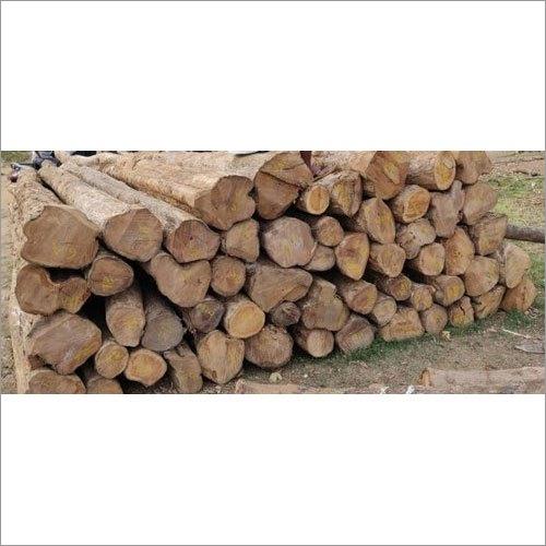 Indian Teak Wood Logs