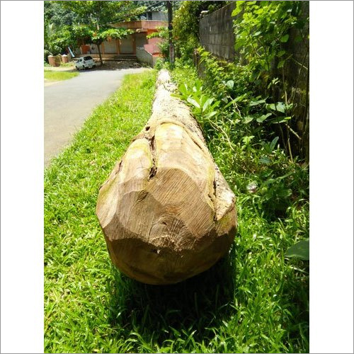 Round Teak Wood Log