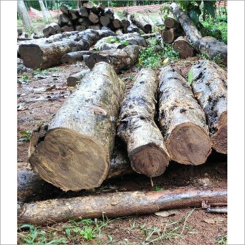 Pure Forest Teak Wood