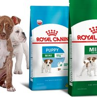 Royal canin for Small animal feed