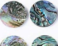 Paua Shell Buttons