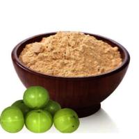 Amla Powder (Spray Dried)