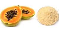 Papaya Powder  ( Spray Dried ) Food Grade