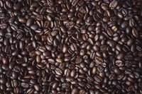 Coffea Robusta Extract