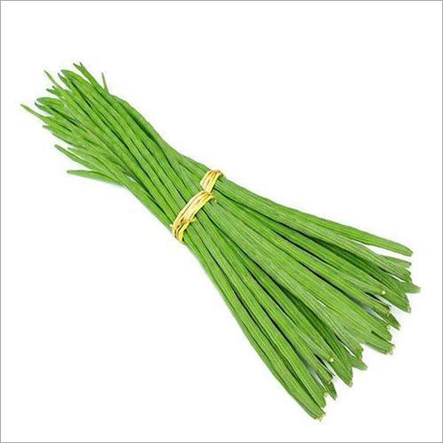 Drumstick - moringa