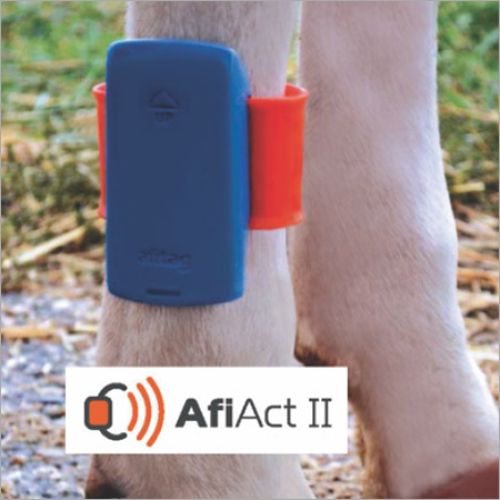 Cow Monitoring Solution