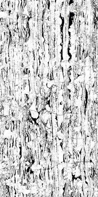 WHITE RIVERA 800X1600MM HIGH GLOSSY PORCELAIN TILE