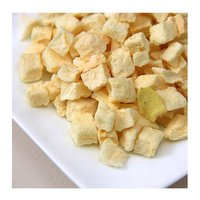 Dried Dehydrated Apple Bulk Packing For Sale