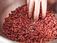Fresh Red Kidney Beans