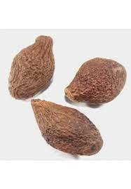 Sterculia Lychnophora / Malva Nuts
