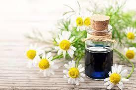 Chamomile Blue Natural Blend Oil