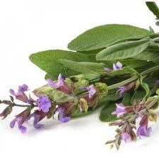 Clary Sage Natural Blend Oil