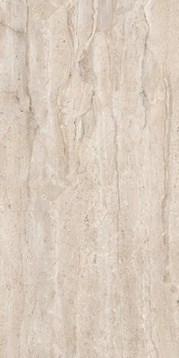 DYNA COUNT 800X1600MM GLOSSY PORCELAIN TILE