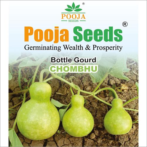 Chombhu Bottle Gourd Seeds