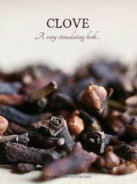 Dry Cloves Seeds