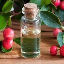Wintergreen Natural Blend Oil