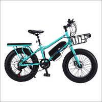20 Inch Blue Lithium Battery Rabbit Bike