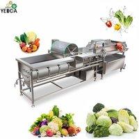 YDVT-1000C Fresh Leaf Vegetable Vortex Washing Machine